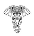 contoured native elephant head with trunk tusks vector image vector image