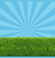 green grass border with sale text vector image vector image