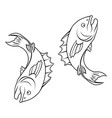 stylised fish vector image vector image