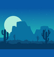 desert at night vector image