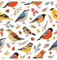 forest winter birds pattern animal vector image