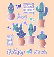 funny cactuses in pots vector image