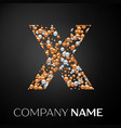 letter x logo gold-silver dots alphabet logotype vector image vector image