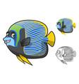Emperor Angelfish vector image