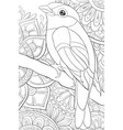 adult coloring bookpage a cute bird on the brunch vector image vector image