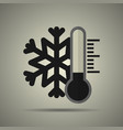 thermometer with snowflake vector image vector image