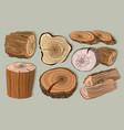 wood stumps set vector image vector image