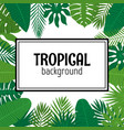 abstract background with tropical leaves jungle vector image