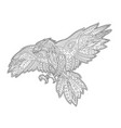 adult coloring book page with decorative hawk vector image vector image