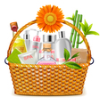Basket with SPA Cosmetics vector image vector image