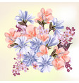 beautiful field flowers for your design vector image vector image