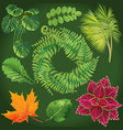 collection green leaves vector image vector image
