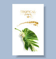 color banner of alocasia tropic leaf vector image vector image