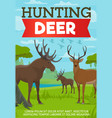 hunting deer and moose poster with forest animals vector image
