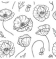 poppy seamless pattern poppies flower sketch vector image