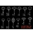 Chalk sketches of vintage keys on blackboard vector image vector image