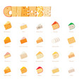 cheese types icon set vector image vector image