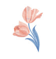 embroidery bouquet of tulips fashionable template vector image