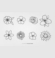 flowers and nature set vector image vector image