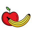 fresh banana and apple fruits vector image