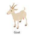 goat icon isometric style vector image