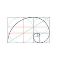 golden ratio design template vector image