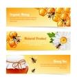 Honey bee banners vector image vector image