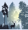 landscape with silhouette forest trees and deer vector image