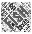 SF texas fishing tips Word Cloud Concept vector image vector image