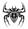 Spider tattoo vector image vector image
