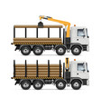 truck with logs vector image