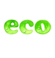 Eco word in watercolor style vector image vector image