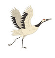 japanese crane bird isolate on a white background vector image vector image