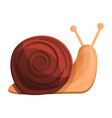 snail icon cartoon style vector image