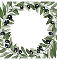 template frame from olive branches vector image vector image