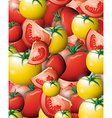 Tomato background vector image vector image