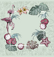 tropical flowers exotic fruits and flamingo birds vector image