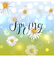 beautiful spring background with chamomile flower vector image vector image