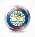 Belize flag button vector image