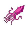 cartoon squid vector image vector image