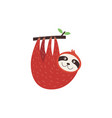 cute sloth hanging upside down from a tree vector image vector image