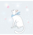 cute white cat and butterfly vector image