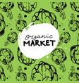 green organic market banner vector image vector image