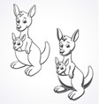 kangaroo and joey color in line drawing vector image