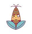 kawaii cute funny corn food vector image