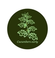 Label for seeds and seedlings of cucumber vector image vector image