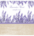 Lavender Card with provence style border vector image vector image