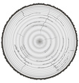 Lumber wood grayscale isolated on white background vector image vector image