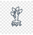 tree and roots concept linear icon isolated on vector image