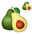 avocado 2 cartoon icon isolated on white vector image